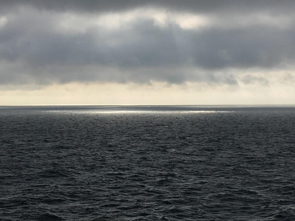 Image: The Baltic Sea, a dead sea? Finland 2019. Photo: Jacqueline Heerema.