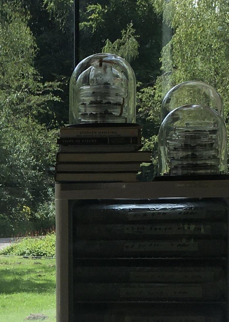 Detail 'Breath of Soil(s)' at Glazen Huis, Amstelpark, Amsterdam, Jacqueline Heerema.