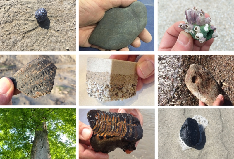 Inspiration: Personal reference collection of fossils and/or artifacts, Jacqueline Heerema